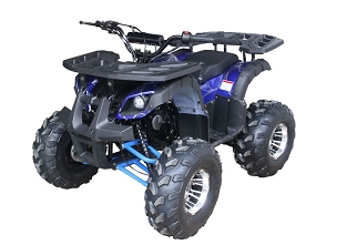 New Rider 10 DLX 4 Stroke Auto w/ Reverse & Hand Shift atv - *Shipping Not Included (Free Shipping Quote Available Online)