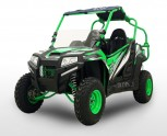 New BMS Avenger 150 EGL22 independent rear suspension UTV - 98% Assembled Custom Crate - Shipping not included