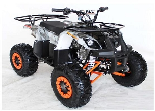 New 2020 ACE Custom 48E 125 Big Tire Automatic  w/Reverse atv