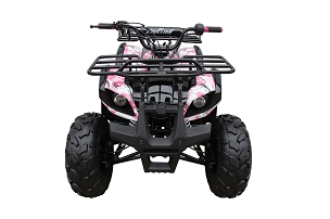 Coolster 3125-XR8U/US 2x4 Semi or Fully Automatic w/Reverse atv -Large Size with 8