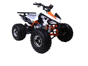 New 2019 Tao Tao Cheetah Deluxe 125 ATV - *Shipping Not Included- Pre-Order Arriving OCT. 28th