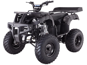 New 2021 Tao Rhino 250 2x4 Deluxe ATV - CUSTOM ORDER - Shipping Included