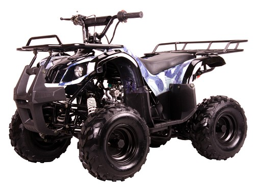 Coolster 3050-D 110 Fully Auto 2x4 Small Size w/Reverse ATV - 7